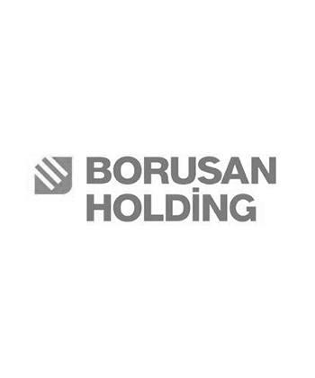 Borusan Holding Başarı Hikayesi
